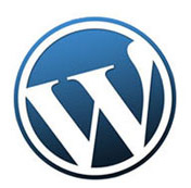 wordpress-website-developer